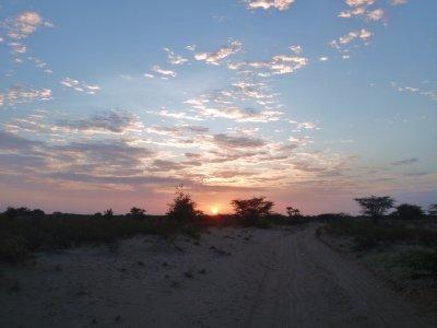Desert dawn