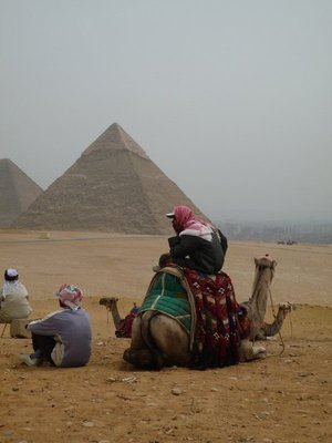 Camel minder at Pyramids