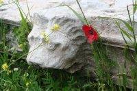 Greece40An..Messini.jpg