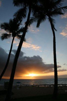Maui_016.jpg