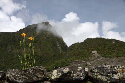 Peru_642.jpg