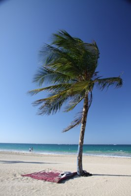 Puerto_Rico_033.jpg