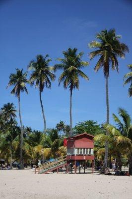 Puerto_Rico_256.jpg