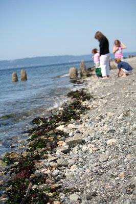Richmond_Beach_241.jpg