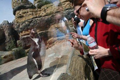 Woodland_Park_Zoo_034.jpg