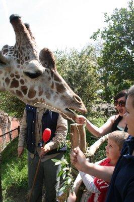 Woodland_Park_Zoo_079.jpg