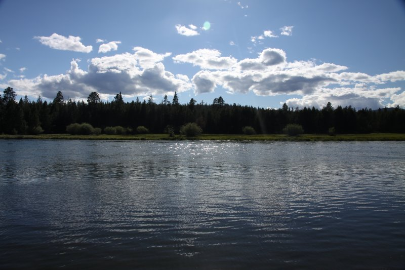 Oregon 164