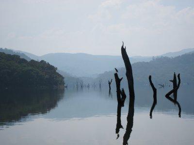 Periyar_Lake.jpg