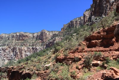 View from the Bright Angel Trail