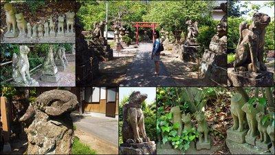Totori & Shimane Trip10
