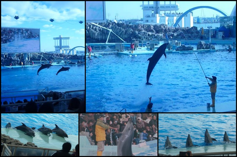 large_29-12-09_Nagoya_Port3.jpg