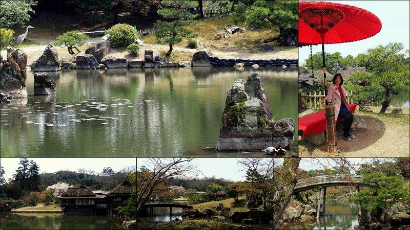 large_Hikone_Hanami7.jpg