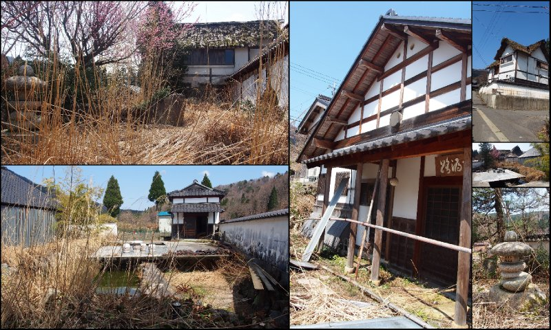large_Local_Hanami9.jpg