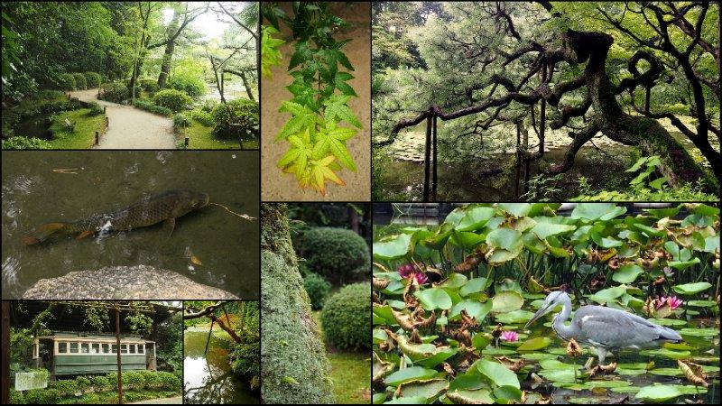 large_Okazaki_Park__Kyoto.jpg
