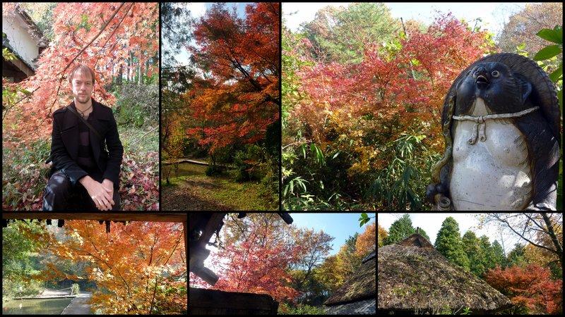 large_Shigaraki_..ja_Mura.jpg