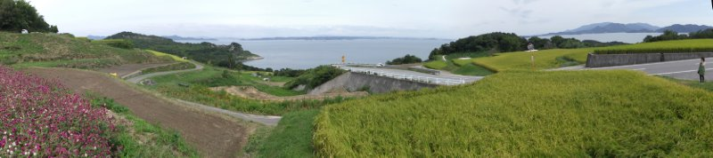 large_Teshima1.jpg