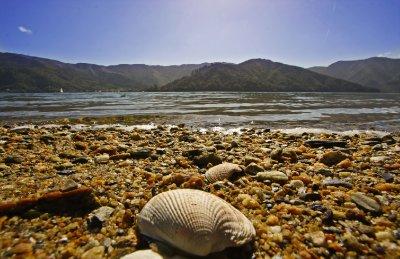 Aussie_bay_beach.jpg
