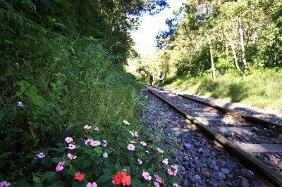 Day_4_-_railway.jpg
