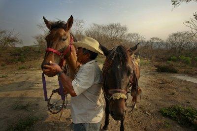 Jose_and_horses.jpg