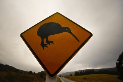 Kiwi_sign.jpg