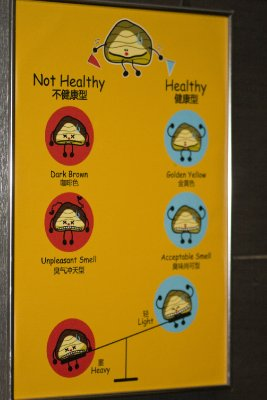 Poo chart, this wierd chart was in the butterfly park toilets