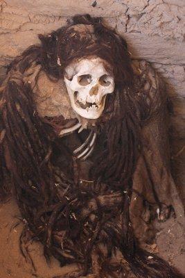 Skeleton_1.jpg