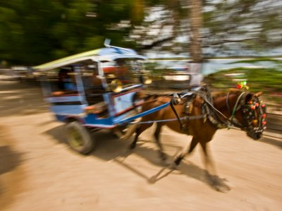 horse_and_cart_gili.jpg