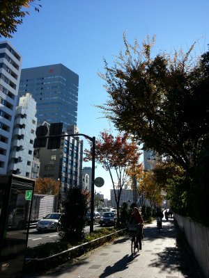 20121127_090329.jpg