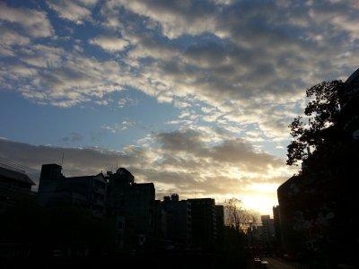 20121130_163705.jpg