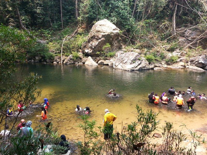 Kelah Sanctuary at Kenyir Lake