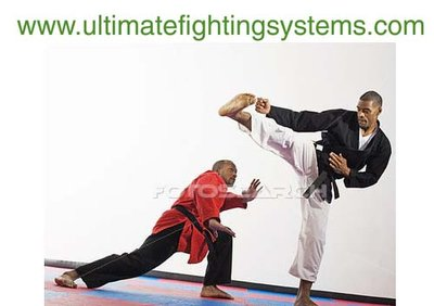 Martial art, sports, health