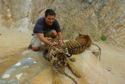 Tygr a Honza