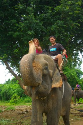 slonik Chirafa