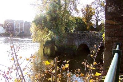 Oct_25_-_I.._Cork_2.jpg