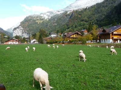 Swiss_countryside.jpg