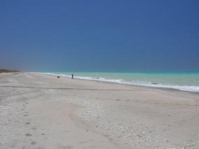 10_Pt-Hedl..s-Beach.jpg
