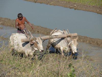 Mandalay01