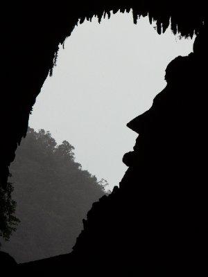 Deer Cave03