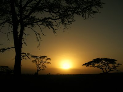 Sunset in Serengeti National Park