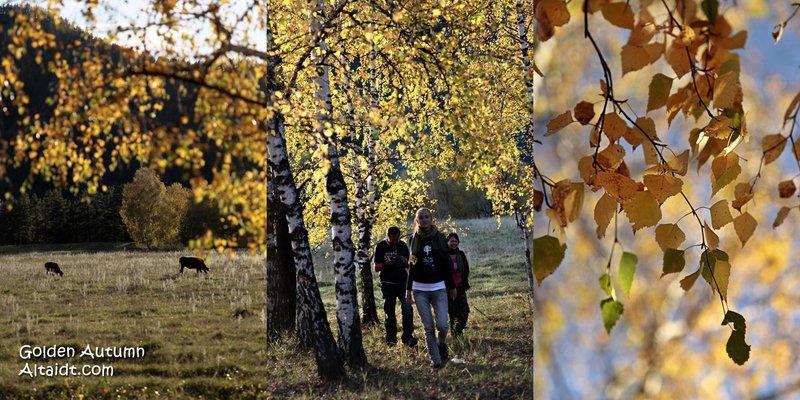 Golden Autumn in the Altai Republic
