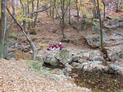 Picnic--South Korea