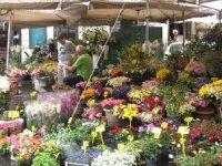ROMEflowermarket.jpg