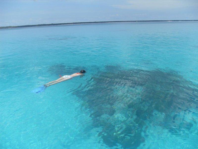 Snorkling Zanzibar