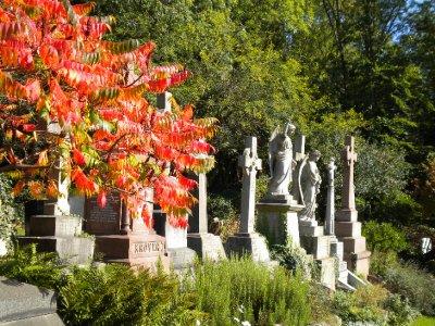 Highgate_East_autumn.jpg