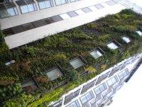 a_green_building.jpg