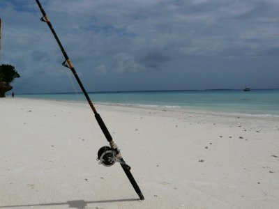 Fishing rod at Nungwi Beach