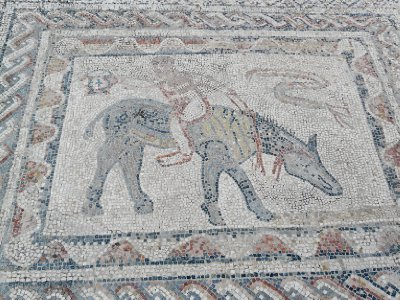 Mosaic in the House of the Acrobat, Volubilis