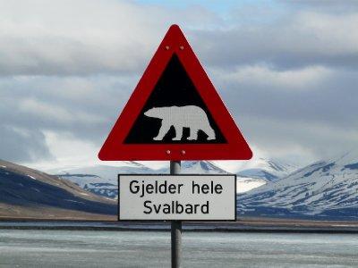 Polar bear sign, Longyearbyen