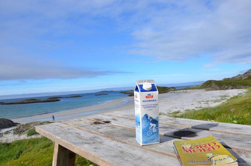 Kulturmjølk and a good book