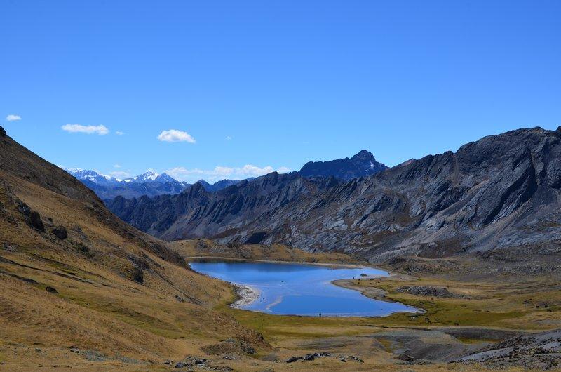 Susucocha lake, 4750 masl